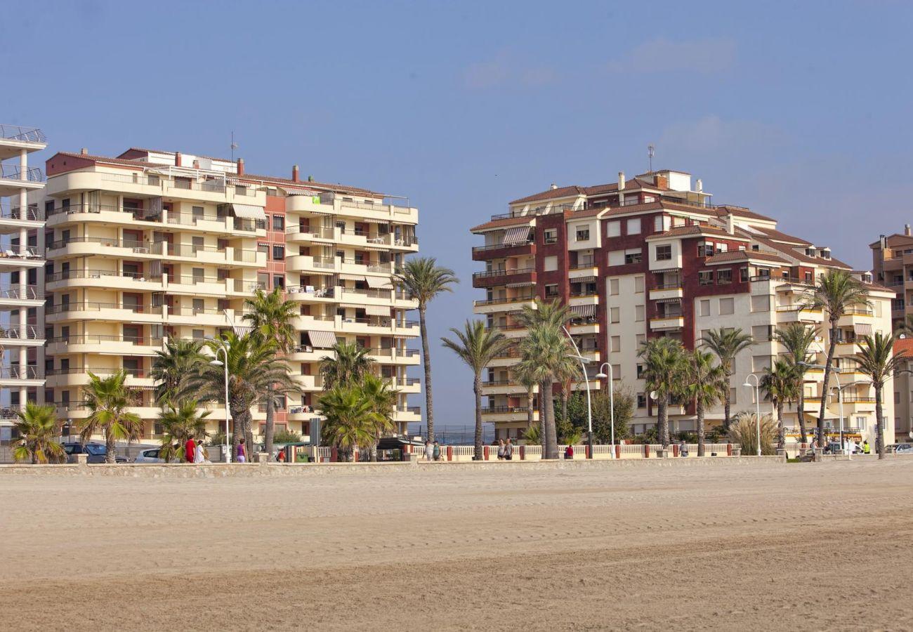Urbanization located in a privileged area